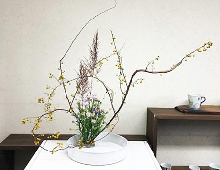 H30.10.31 菜の花WS.jpg